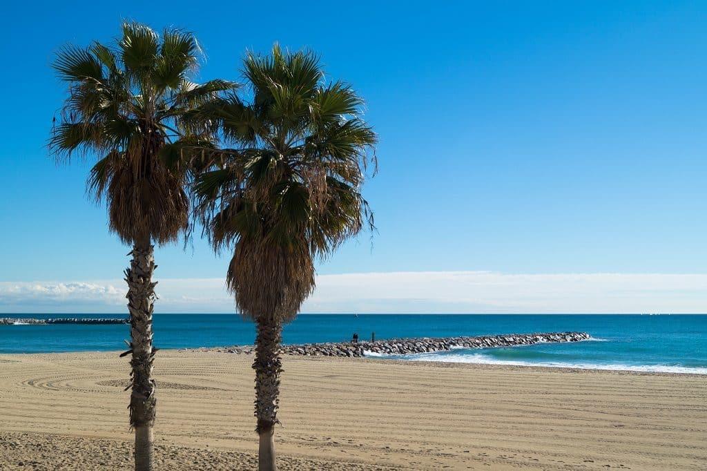 visitez-plage-barcelone-detente