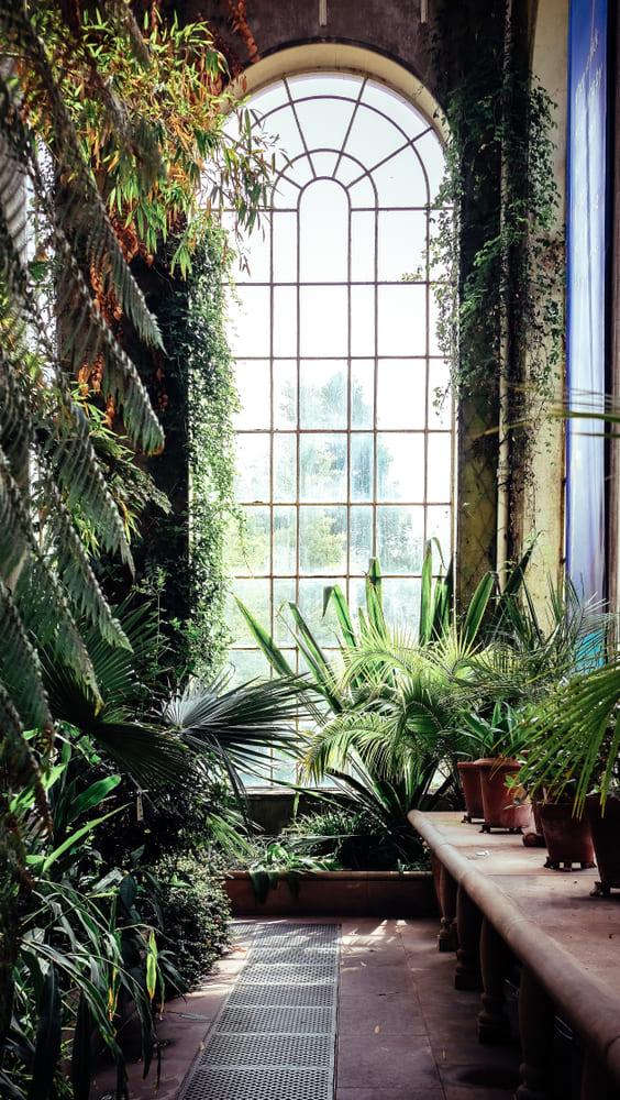 Botanic-Gardens-que-voir-gratuitement-edimbourg