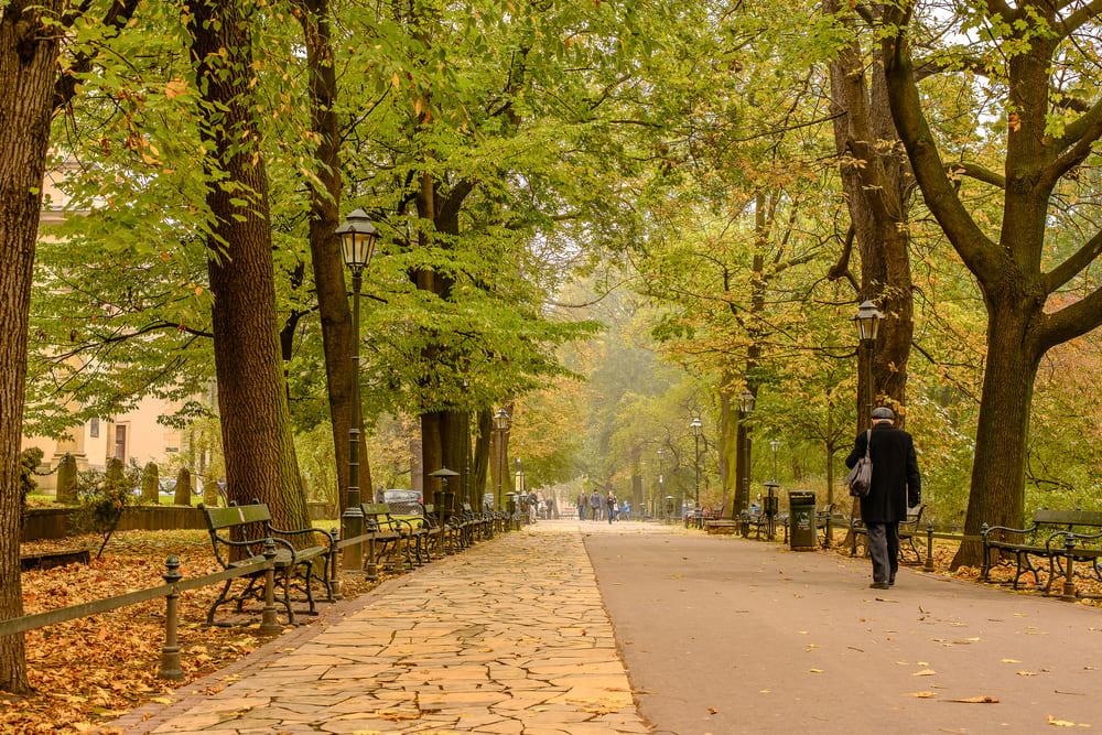 visite-plenty-parc-cracovie (1)
