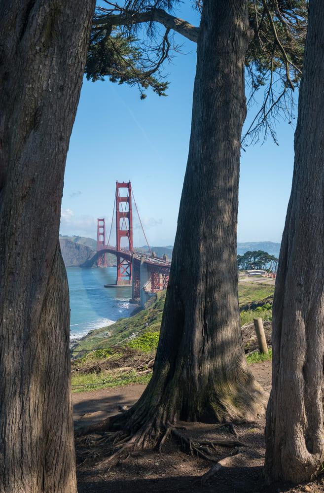 Golden-Gate-Park-visite-san-francisco (1)