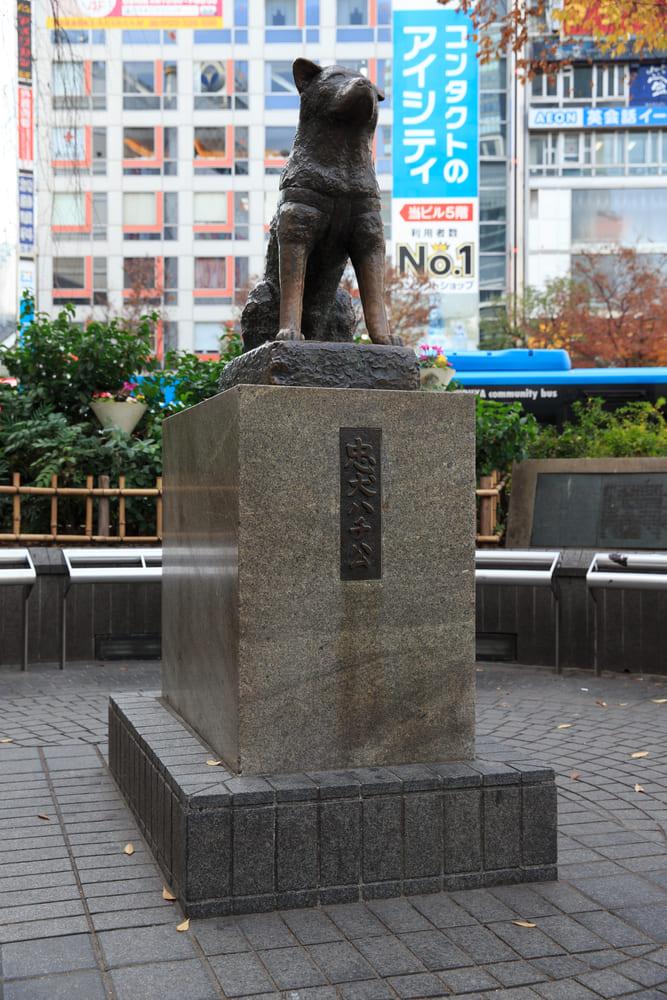 Hachiko-tokyo-que-voir