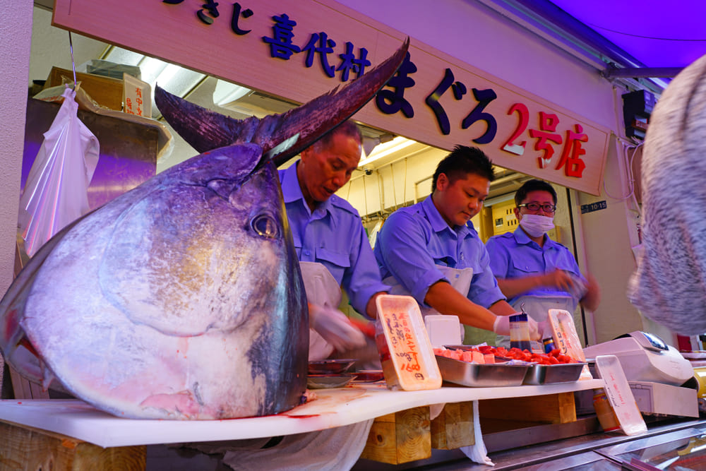 Toyosu-marche-poisson-thon-visite-tokyo (2)