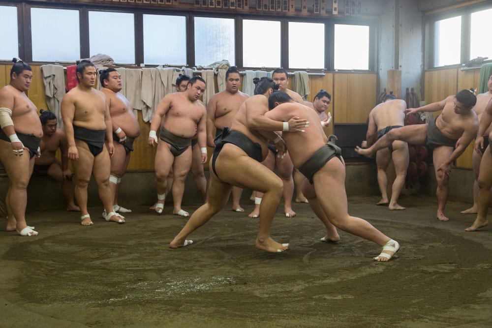 activite-gratuit-tokyo-sumo-entrainement