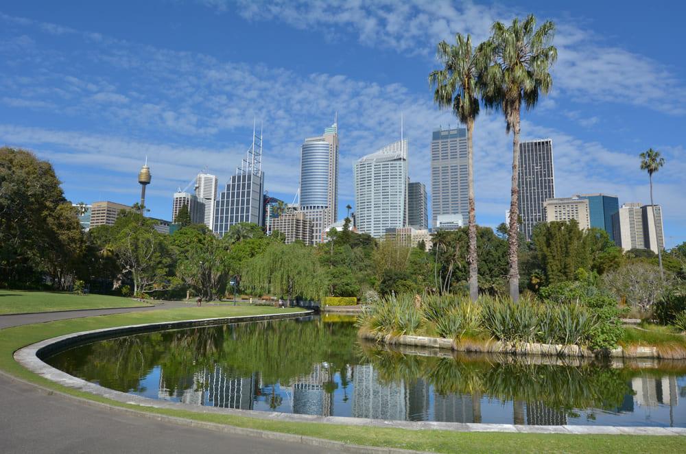 jardin-botanique-royal-sydney-visite (1)