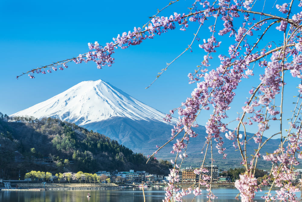 mont-fuji-lac-tokyo-activite (3)