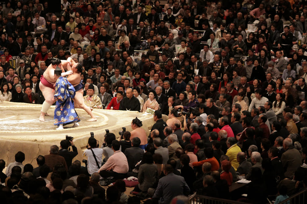 spectacle-sumo-tokyo-Ryogoku