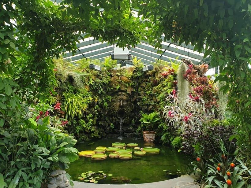visite-gratuite-naples-jardin-botanique