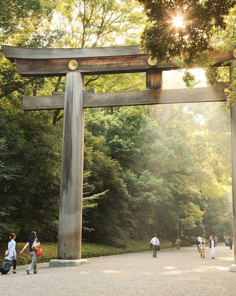 visite-gratuite-tokyo-Yoyogi