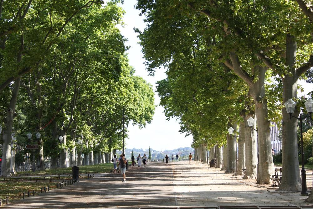 Esplanade-Charles -Gaulle-montpellier-gratuit