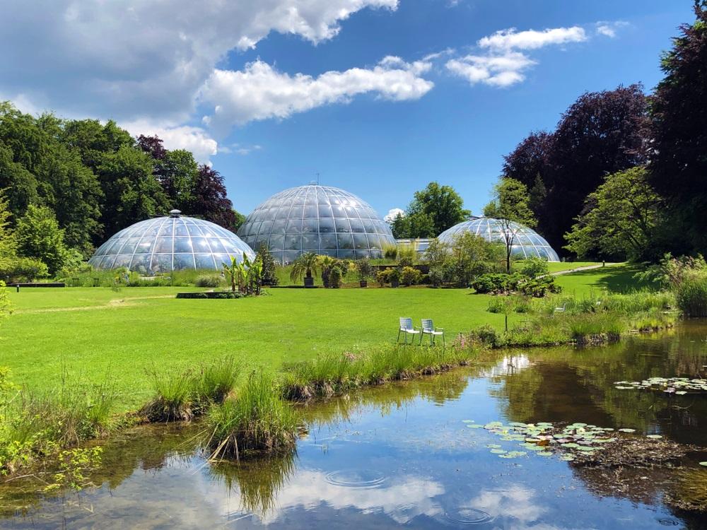 visite-gratuite-jardin-botanique-zurich