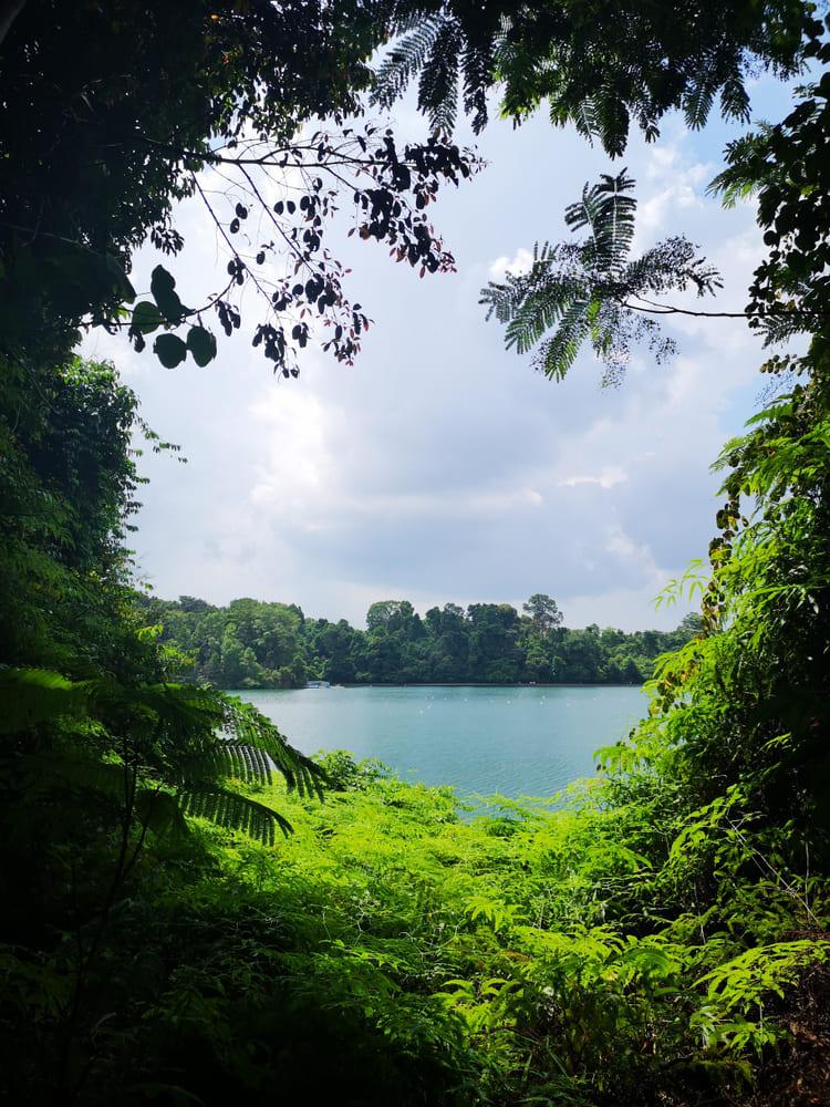 promenade-gratuite-singapour (1)