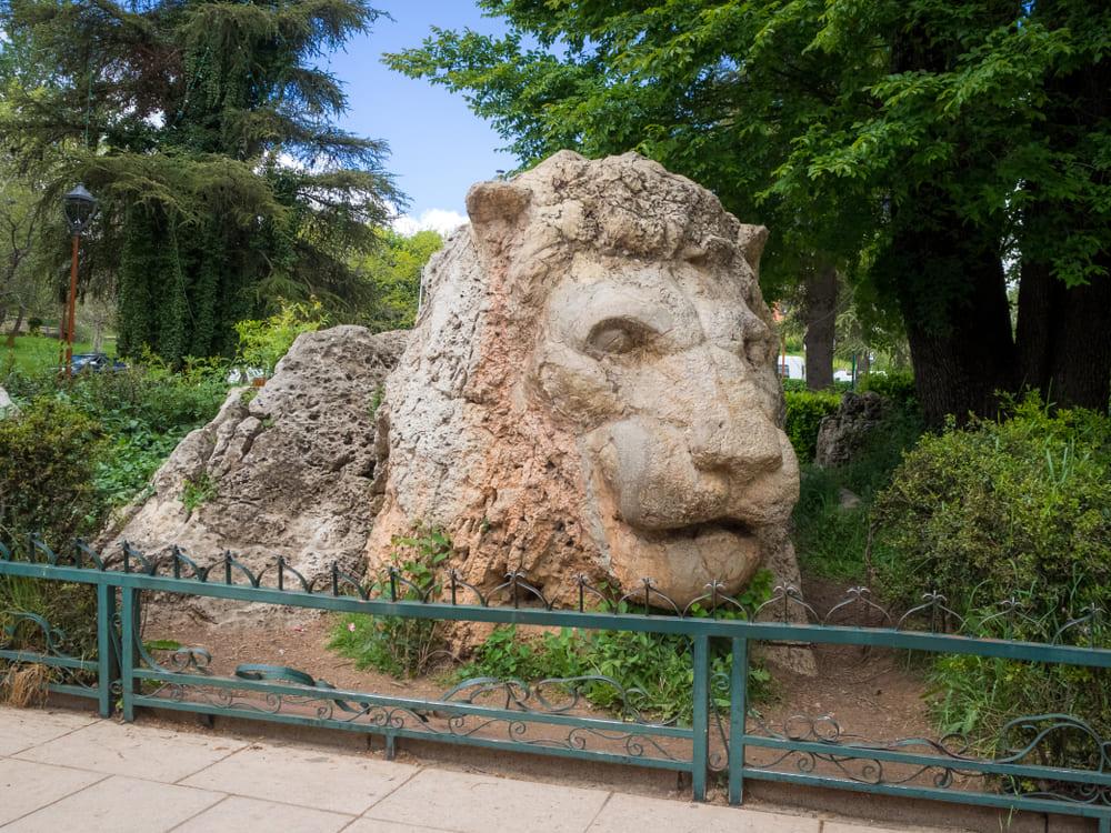 visite-fes2-ifrane-lion