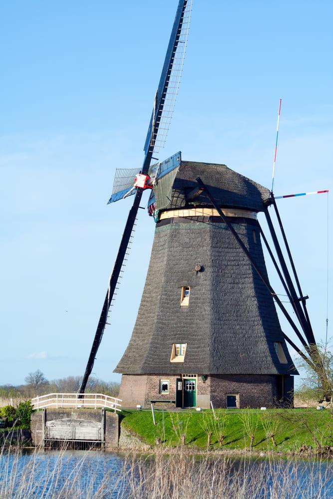 Kinderdijk-moulin-alentours-rotterdam-visite