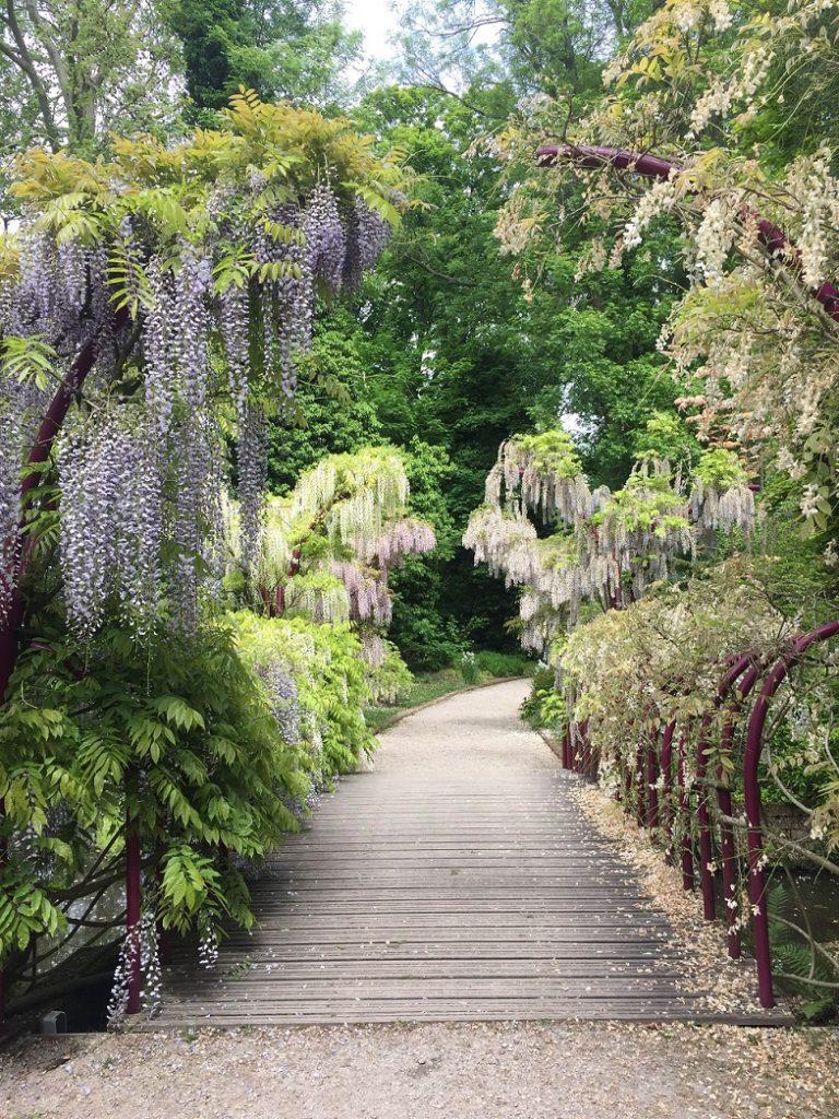 quartier-jardin-botanique-rotterdam