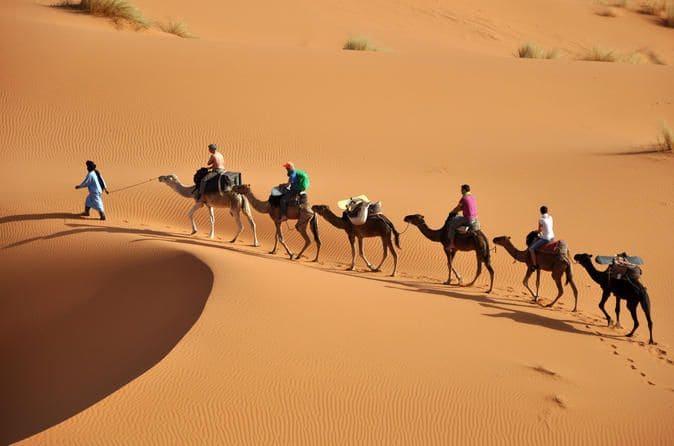 visite-desert-sahara-casablanca