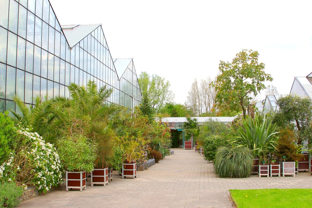 Botanic Gardens-gratuit-utrecht