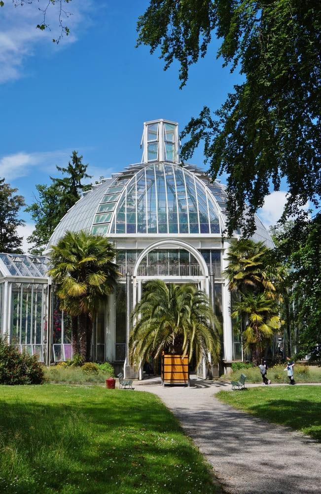 visite-gratuite-geneve-jardin-botanique