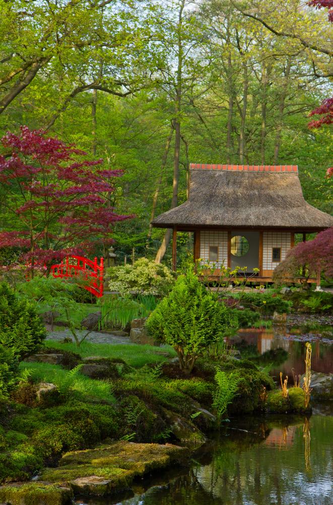 visite-gratuite-la-haye-jardin-japonais