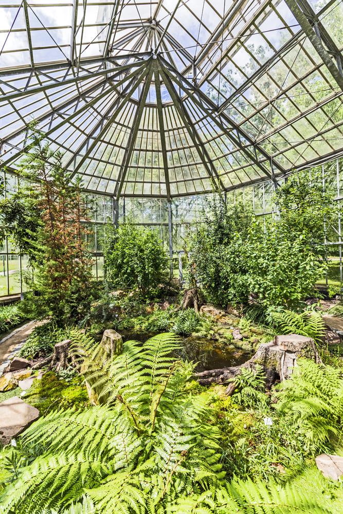 visiter-gratuitement-jardin-botanique-francfort