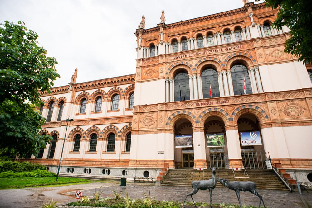 musee-verone-histoire-naturelle